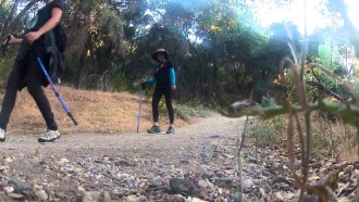 Family Hiking at Placerita Canyon