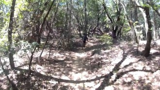 Ridge Trail – Soquel Demo Forest