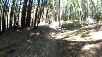 Sawpit Trail