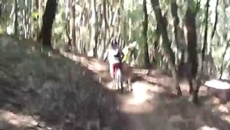 Soquel Demo Flow Trail