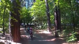 Family Bike Ride – Yosemite National Park