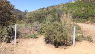 Caballero, Backbone, Rustic & Sullivan Canyon Loop