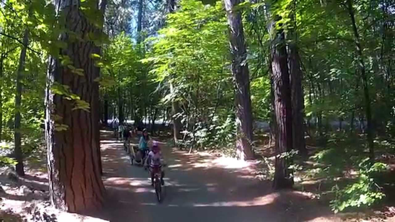 Family Bike Ride – Yosemite National Park